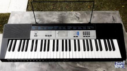 Teclado Casio ctk1550 + fuente