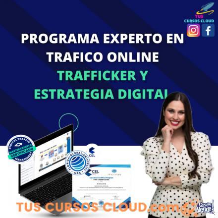 Programa Experto en Trafficker y Estrategia digital en Argentina Vende