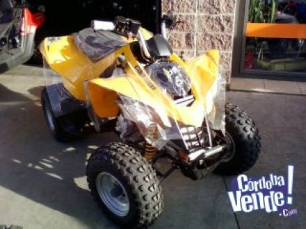 CAN-AM DS 250 0KM vendo o permuto