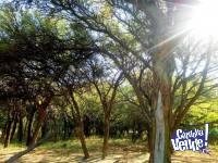Dueño vende hermoso lote en San Marcos Sierras.