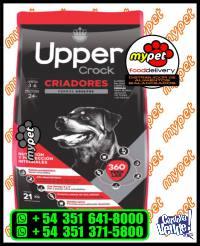 UPPER CROCK - ADULTOS CRIADORES