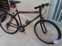 Bicicleta Mountain Bike R26 Pinarello P200