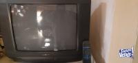 Televisor 21 pulgadas Noblex
