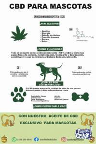 Aceite de CBD Medicinal en Cordoba Argentina