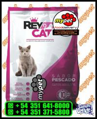 REY CAT - GATOS ADULTOS PESCADO