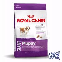 ROYAL CANIN GIANT PUPPY X 15KG