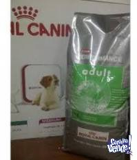 ROYAL CANIN PERFOMANCE ADULTO 20KG
