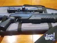 Rifle Hatsan AT-44 PA