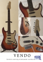 Guitarra electrica Warning stratocaster