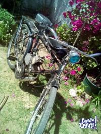 Bicimoto Vintage 48 cc
