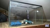 Vendo pecera 60cm de largo x20 de ancho x 25 de alto + calentador para peces de agua caliente + acc.