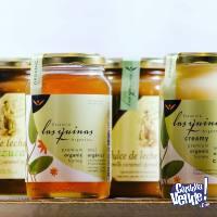 Miel Orgánica y Agroecológica Las Quinas x 500 - Sin TACC