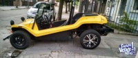 Vendo Buggy Puelche impecable!!!!!
