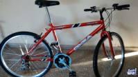 Bicicleta oxia