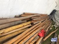 Vendo postes de eucaliptus saligne barnizados