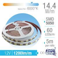 TIRA LED 5050 PROFESIONAL INTERIOR BCO FRIO 6000K X 5 MTS