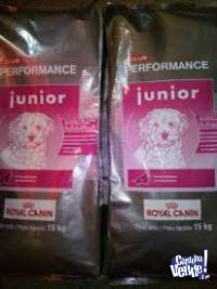 ROYAL CANIN PERFOMANCE JUNIOR 15KG