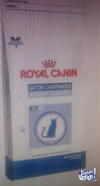 ROYAL CANIN WEIGHT CONTROL GATOS CASTRADOS X 12KG ZONA SUR