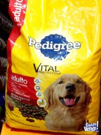 PEDIGREE ADULTO 21KG. $690 EFECTIVO