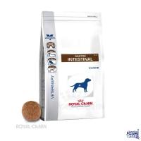 ROYAL CANIN GASTRO INTESTINAL DOG X 10KG + CHAMPAGNE